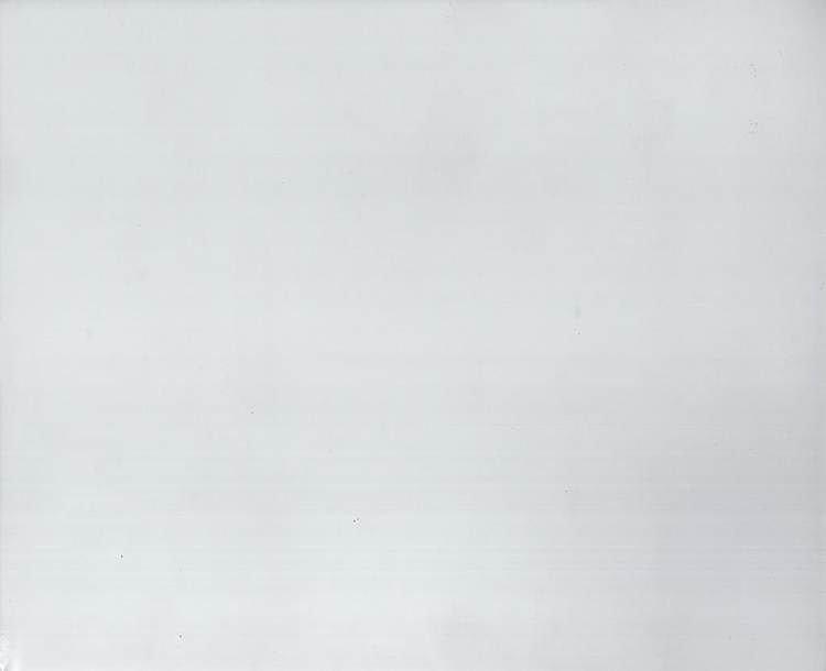 Белое санированное